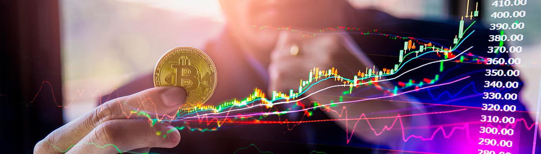 acompanhar a perda de lucro com bitcoin