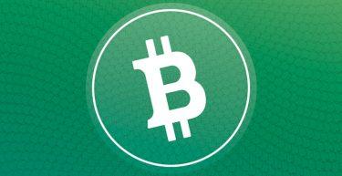O Bitcoin Cash é uma das principais criptomoedas do mercado