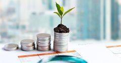 Investimento para iniciantes: dicas para quem quer começar