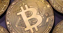 Quais criptomoedas investir agora? – Foxbit convida Bo Williams